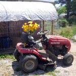 Jeanette's Mother's Day presents - a chicken coop, a lawn tractor, and flowers